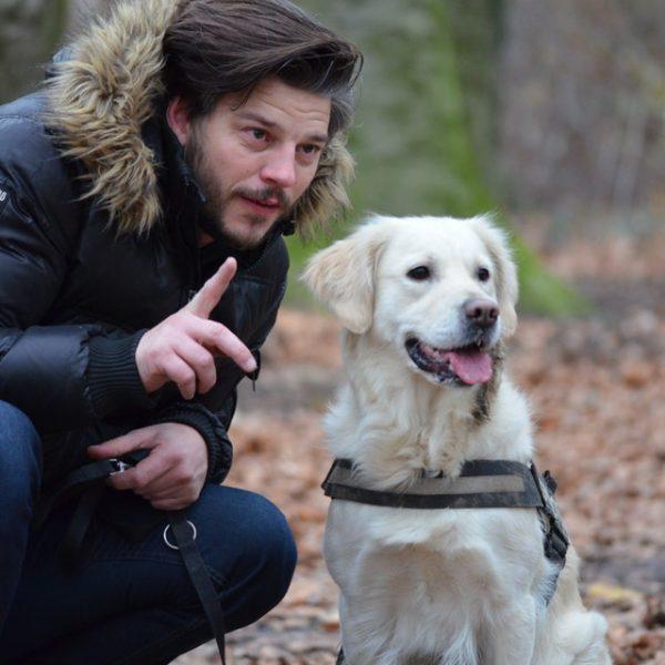 leisure-wildlife-photography-pet-photography-dog-159557.jpeg